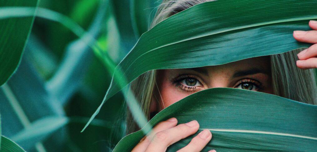 plant blindness
